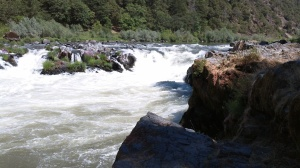 "Rainie Falls on the Rogue River. The Middle Chute is on the left. The ""chicken chute"" is not visible further left."