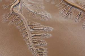 Colorado River Delta (source: USGS)